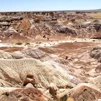 Overlook landscape at the Petrified Forest