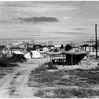 Private auto camp for cotton pickers in Buckeye, 1940 in Arizona