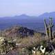 Saguaro National Park landscape with hills, Arizona