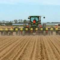 Corn planting with a tractor in Arkansas