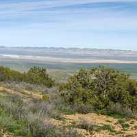 Scenic Hilly Landscape at Carrizo Plains National Monument