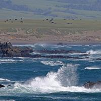 Waves Crashing on the ocean in Piedras Blancas Light Station in California