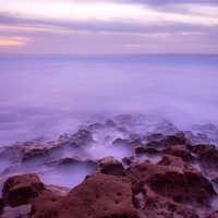Fog by the Seashore in San Diego, California