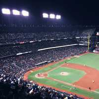 San Francisco Giant Field in California