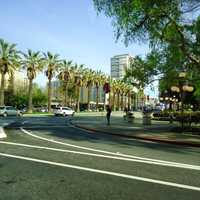 Downtown San Jose with trees and street in San Jose, California