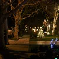 Willow Glen Christmas Lights in San Jose, California