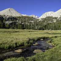 Crabtree Meadows in Sequoia National Park, California