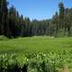 Crescent Meadow in Sequoia National Park, California