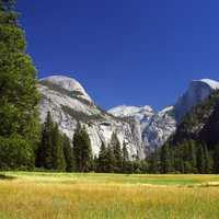 View of Yosemite National Park with fields and mountains, California