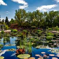 Botanic Gardens in Denver, Colorado