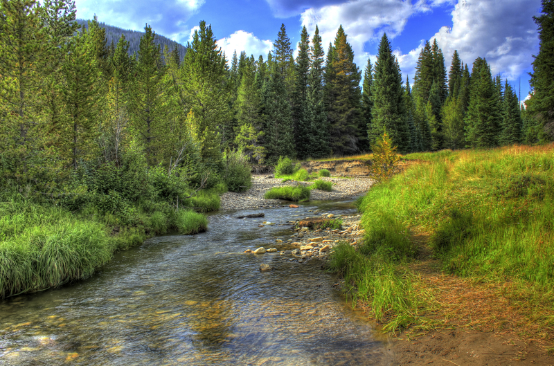 Infant Colorado River At Rocky Mountains National Park