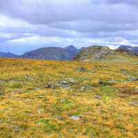 Overview of the Tundra Landscape at Rocky Mountains National Park, Colorado