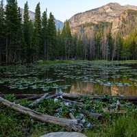 Dream Lake landscape
