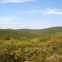 Mount Frissell, the high point of Connecticut landscape