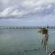 Palm Tree and beautiful overseas highway landscape