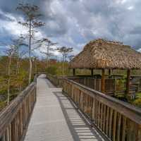 Boardwalk and hut at Big Cypress National Preserve