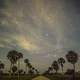 Cloudy stars at night at Big Cypress National Preserve