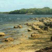 Rocky shoreline at Key Largo, Florida