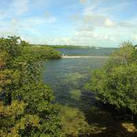 Stream and Horizon at Key Largo, Florida
