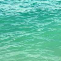 Blue-green water at Miami, Florida