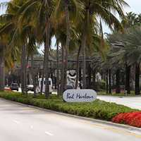 Collins Ave with trees in Bal Harbour, Florida