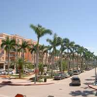 Mizner Park with palm trees in Boca Raton, Florida