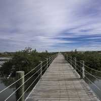 Boardwalk Walkway into the Lagoon