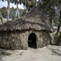 Native Hut at the Fountain of Youth