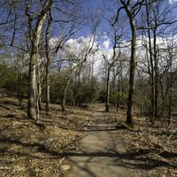 Chattahoochee-oconee national forest free photos