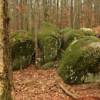 Rocks at Redtop Mountain State Park, Georgia