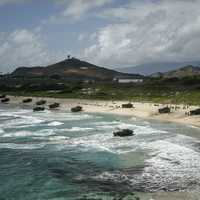 Amphibious assault vehicles on the Hawaii Beach