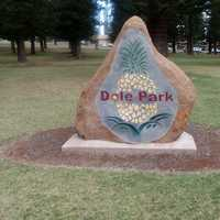 Dole Park Rock Statue in Lanai City, Hawaii