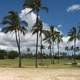 Ewa Beach landscape with Palm Trees and sky in Hawaii