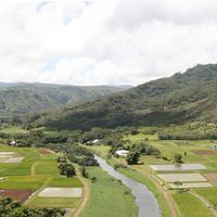 Hanalei Valley viewed from the lookout near Princeville, Hawaii