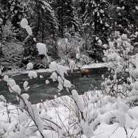 Winter on the Saint Joe River
