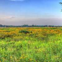 Another Prairie Landscape at Chain O Lakes State Park, Illinois