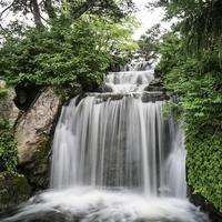 Beautiful Waterfall in the Chicago Botanical Gardens