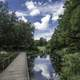 Walkway across the pond under the skies at Chicago Botanical Gardens