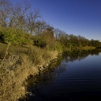 Shoreline Landscape at Le Aqua Na State Park, Illinois