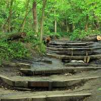 Hiking Steps at Starved Rock State Park, Illinois