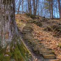 Steps up the hill at Maquoketa Caves State Park, Iowa