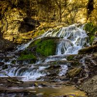 Dunning Spring Falls near Decorah, Iowa photo and information