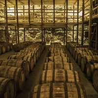 Barrels of Whiskey in the storage Room