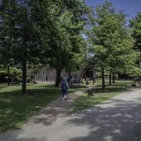 Campus and trees and sidewalk at Maker's Mark Distillery, Kentucky