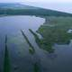 Aerial view of Louisiana wetland habitats