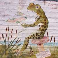 Frog Sitting on a chair Mural in Rayne, Louisiana