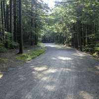 Carriage Road in Acadia National Park, Maine