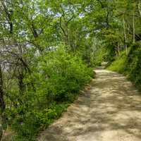 Maryland Heights Wooded hiking path