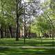 Harvard Yard in Cambridge, Massachusetts