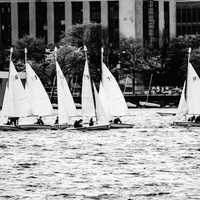 Sailboats on the river in Boston, Massachusetts